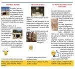 BrochureIIIA-2